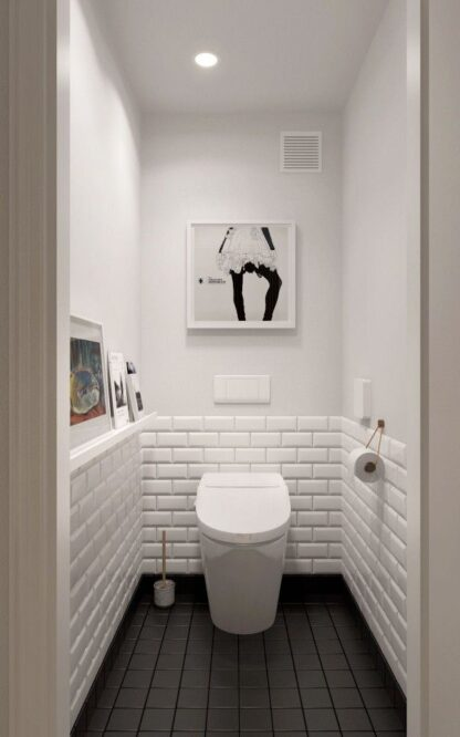 кирпич в туалете