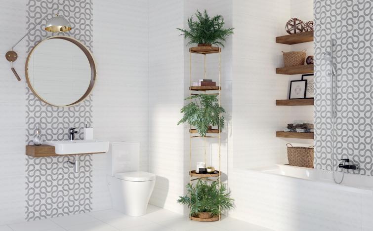 какие растения поставить в ванной