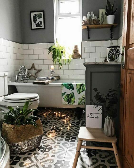 растения растущие в ванной